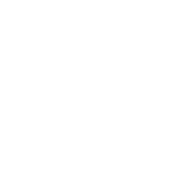 The Real Logo